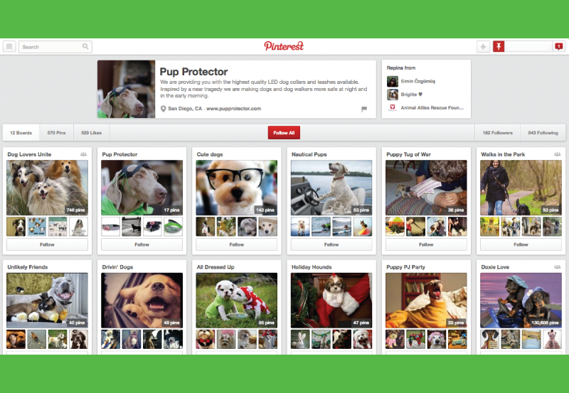 Pup-Protector-Pinterest-Internet-Marketing-Social-Media-San-Diego-MySMN